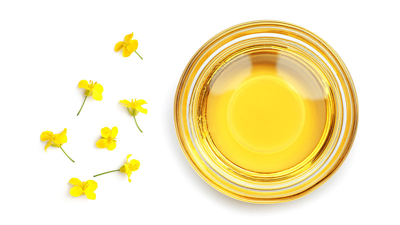 Canola oil sits in a small glass bowl with scattered canola flowers to on a white background to its left