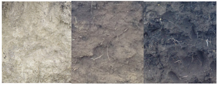 Examples of soil with less than 1%, 2% and 3% organic matter from left to right, respectively. Photo: Jodi DiJong-Hughes