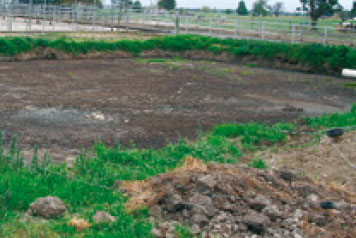 Crusty pond before Digest-it for Effluent.