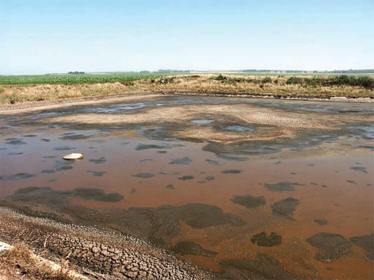 effluent pond at donovan dairies