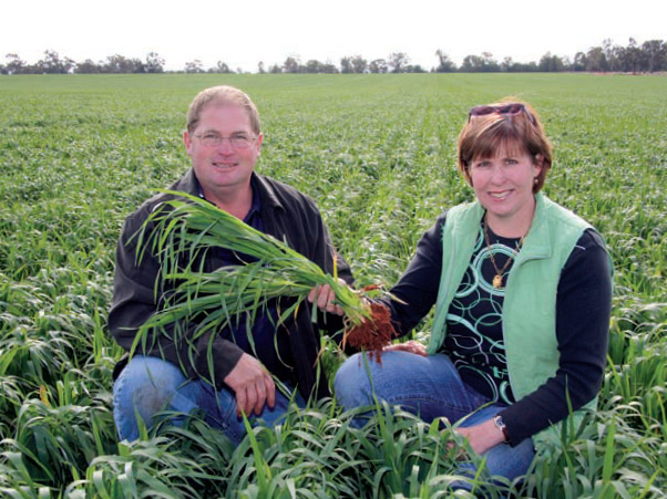 Peter and Gay Eisenhauer check Mitika oats sown in early May in a paddock treated with BioAg products at 'Glen Iris', Ganmain, NSW. Mitika is a dwarf variety producing oats for oatmeal and baking.