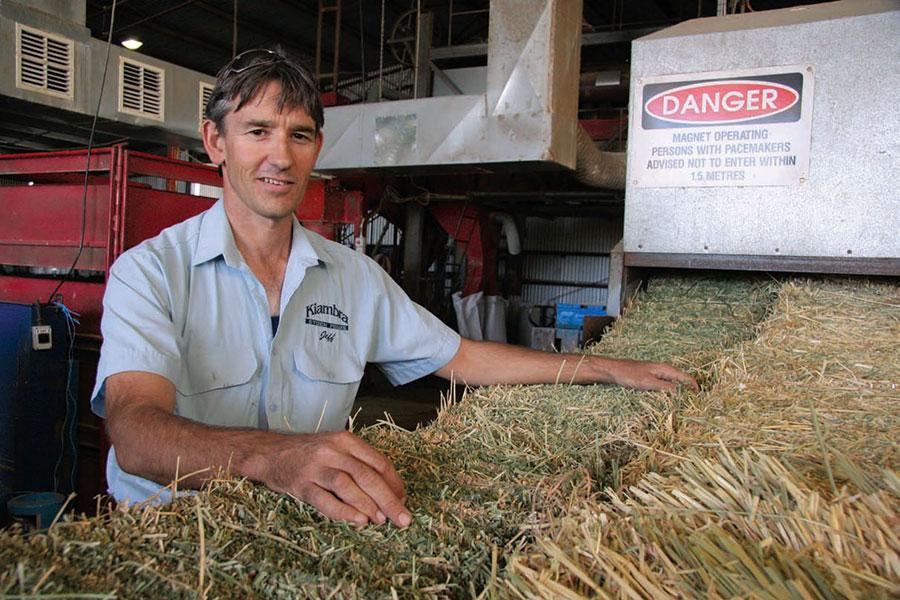 Andrew Forrest inspects Buloke barley