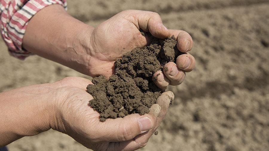 Plans for 2021 – beyond BioAg break