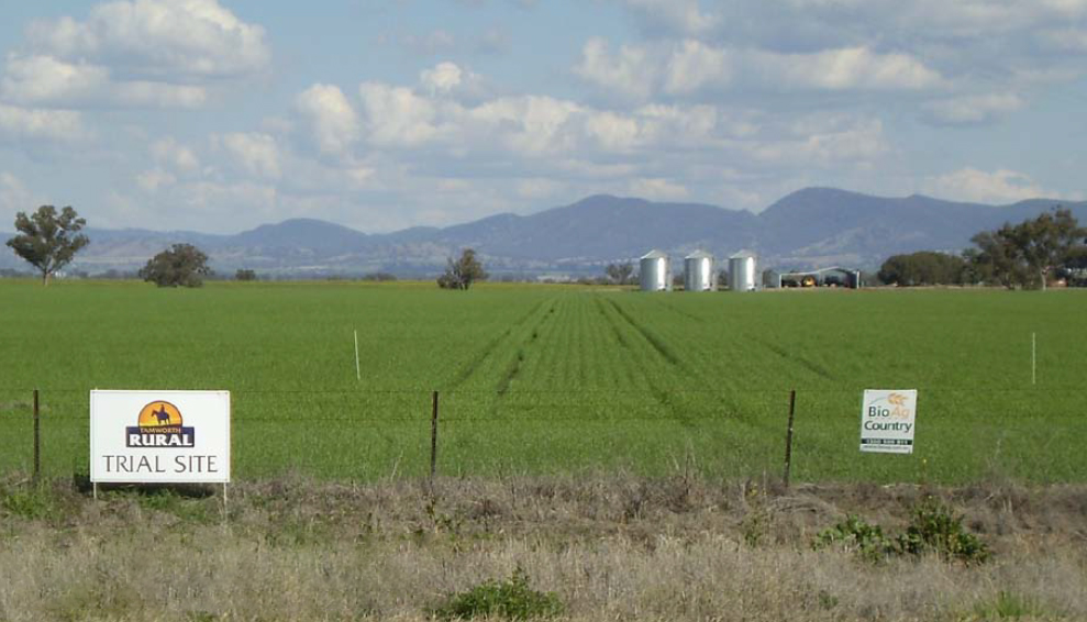 A green paddock surrounded by a fence with signs that read 'BioAg' and 'Tamworth Rural trial site'. There are wheat silos in the background